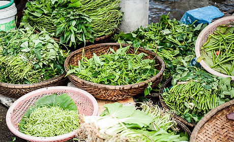 Vegetables and Herbs