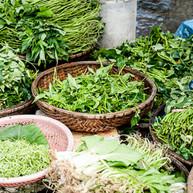 Colorado Wholesale Herbs