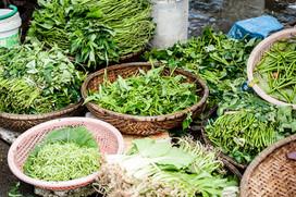 1. 葉野菜をベースにしたケトジェニックダイエット
