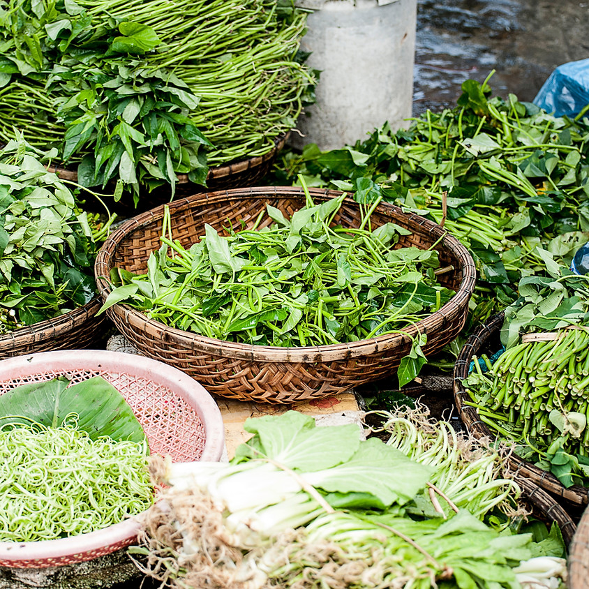 Herbal Cleansing and Detoxing in a Toxic World