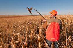 Local Hunting