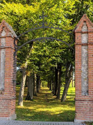Nieczynny cmentarz ewangelicki w Jezioranach