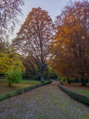 Park w Łężanach