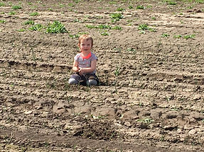 Baby working in field