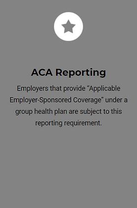 ACA Reporting.PNG