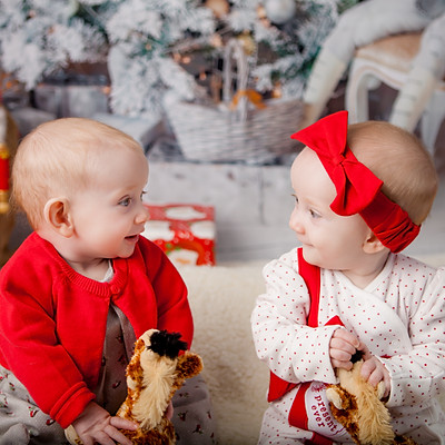 Rose & Eva Christmas Mini 2018