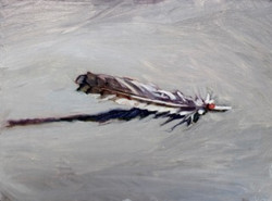 13-POS-Feather5
