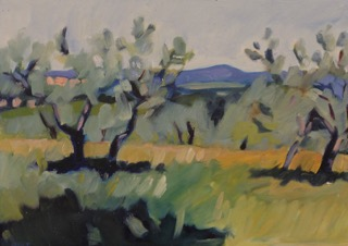 13 Olive  Grove Assisi POL 13 x 18