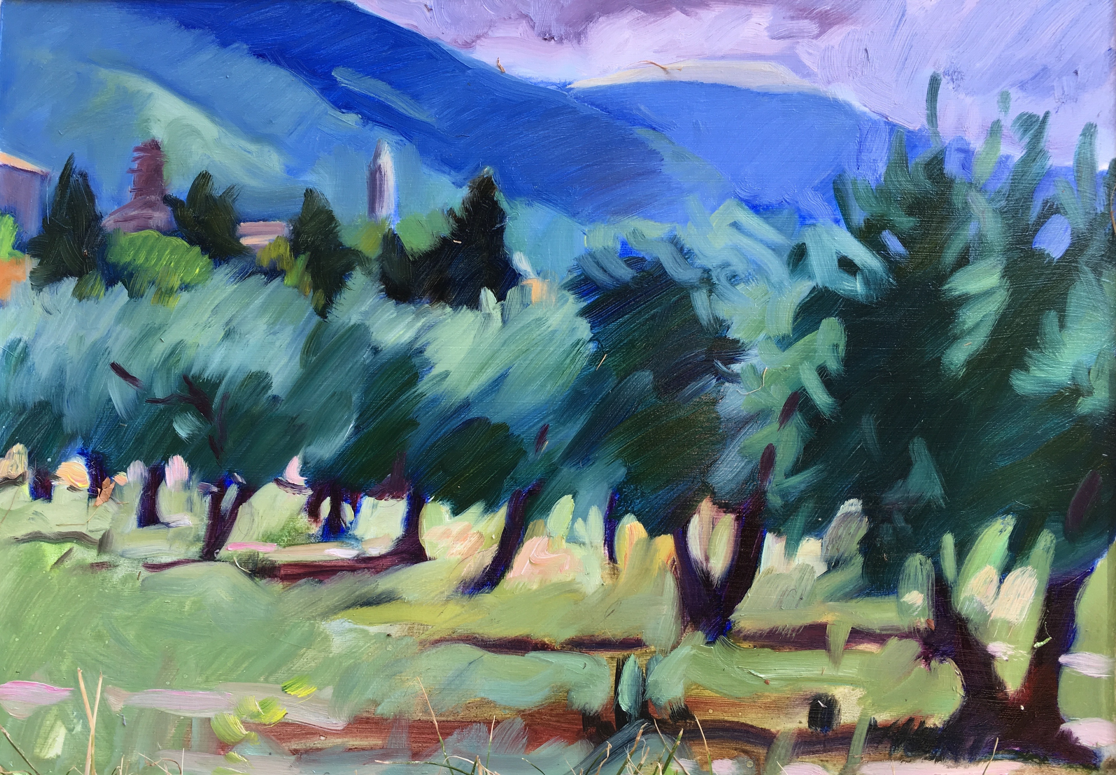 Assisi Olive Grove 13_x 18_