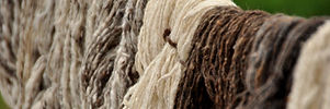 Process.Organic.Wool.Natural.Plant.Dyed.