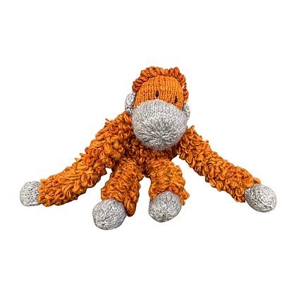 Orangutan Safari