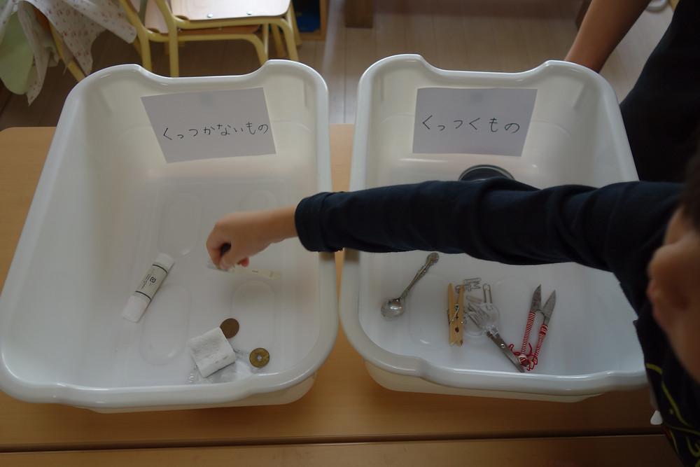 磁石 性質調べ