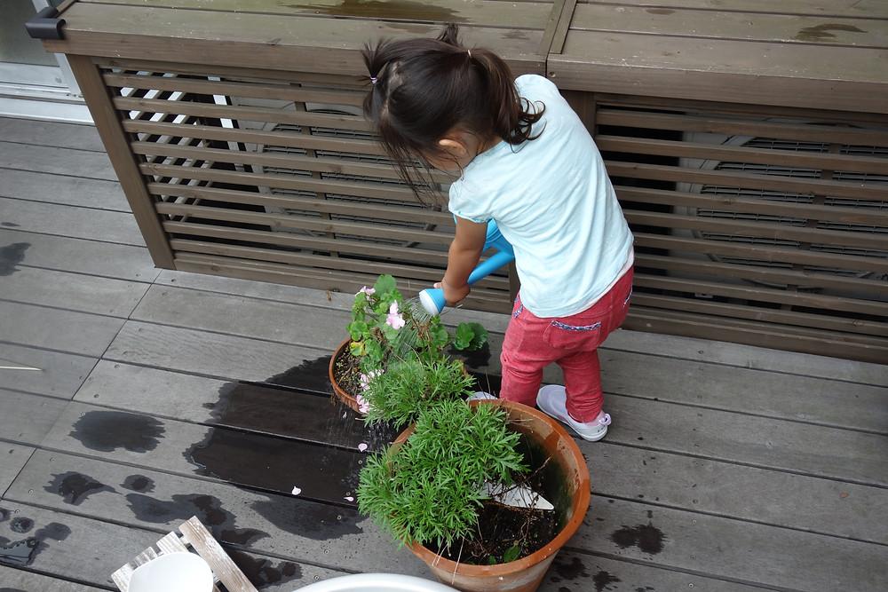 インファント 花に水をやる