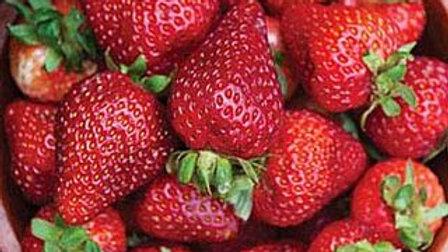Strawberry- Seascape