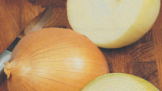 Onion- Candy