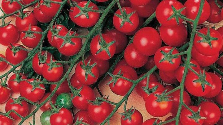 Tomato- Sweet Million