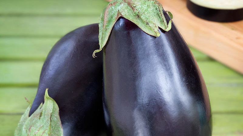 Eggplant- Black Beauty