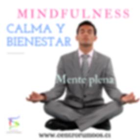 Calma Y Bienestar.png