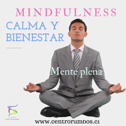 Calma%20Y%20Bienestar%20(1)_edited.jpg