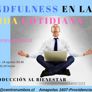 Mindfulness en la vida cotidiana (6).png