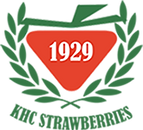 logo 1929 best.png