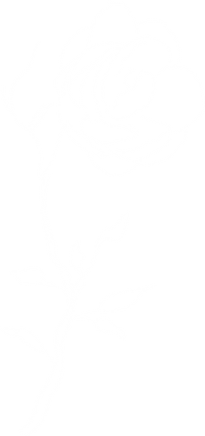 jasmine-flowers-4 [Converti]BLC.png