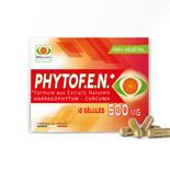 PhytoF.E.N.