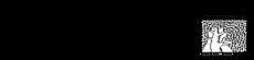wiz_logo1-01 2.png