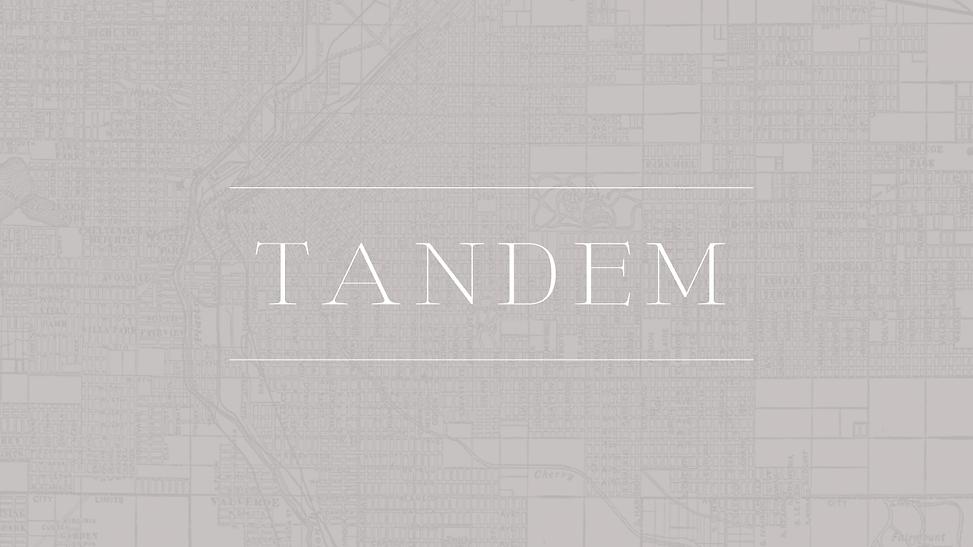 TANDEM-MapPattern-Portfolio-Panel.png