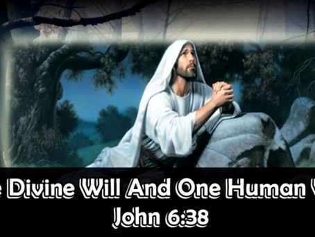 One Divine Will And One Human Will, John 6:38