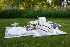 relaxed picnic