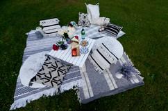 picnic set up for 2