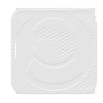 THE FORUM_Logo For bigBlock image.png