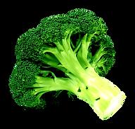 Brocolis PNG