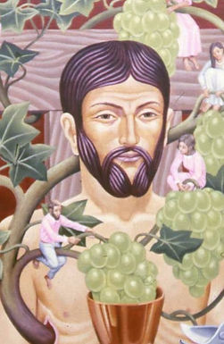 Christ the Vine