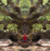 AMP Andyflying5236b Kopie.jpg