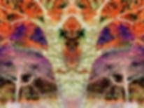 DSC_4554+Kopie+2bcde.jpg