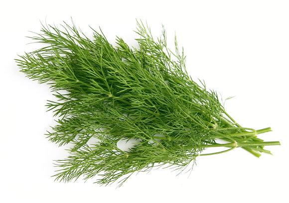 Herbs, Dill - 3 oz.