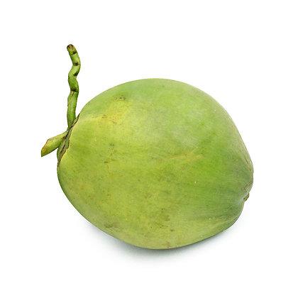 Coconut, Fresh