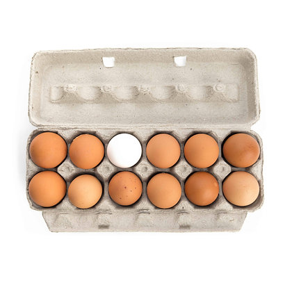 Eggs, Punachicks Farm - Large (1 Dozen)