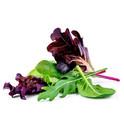 Salad Mix.jpg