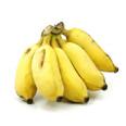 Mysore Bananas
