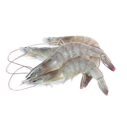 Shrimp, Kona - 14 oz