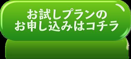 otameshimoushikomi.png