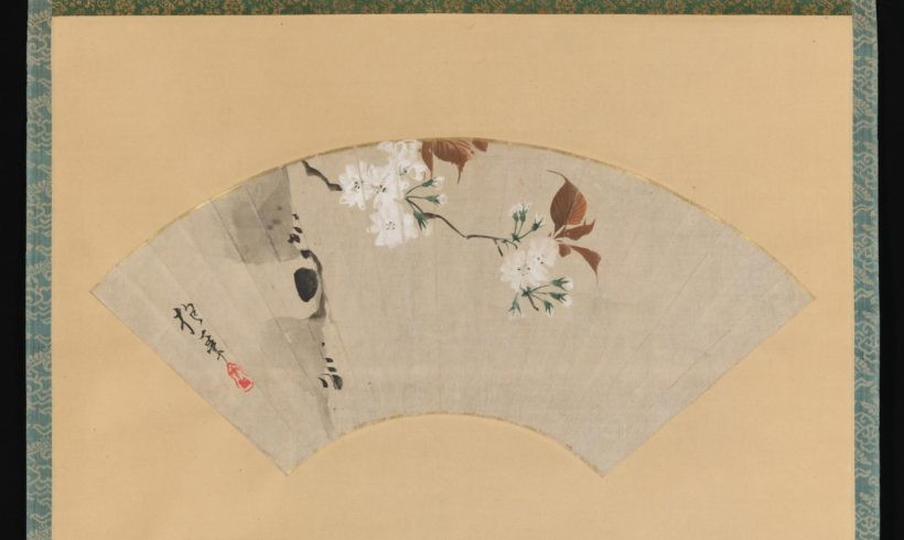 Cherry Blossoms,18th century, Sakai Hōitsu