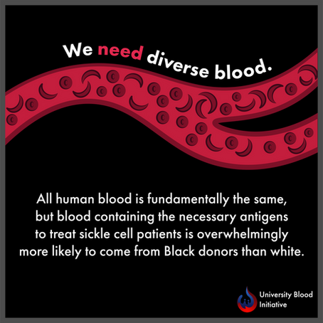 Impacts: Why We Need Diverse Blood