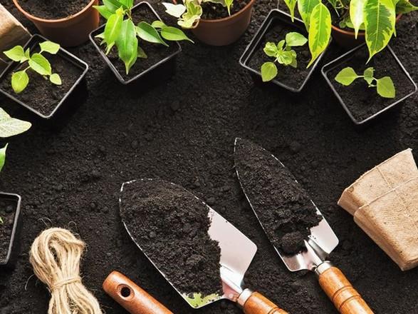 rice-hull-fertilizer2.jpg