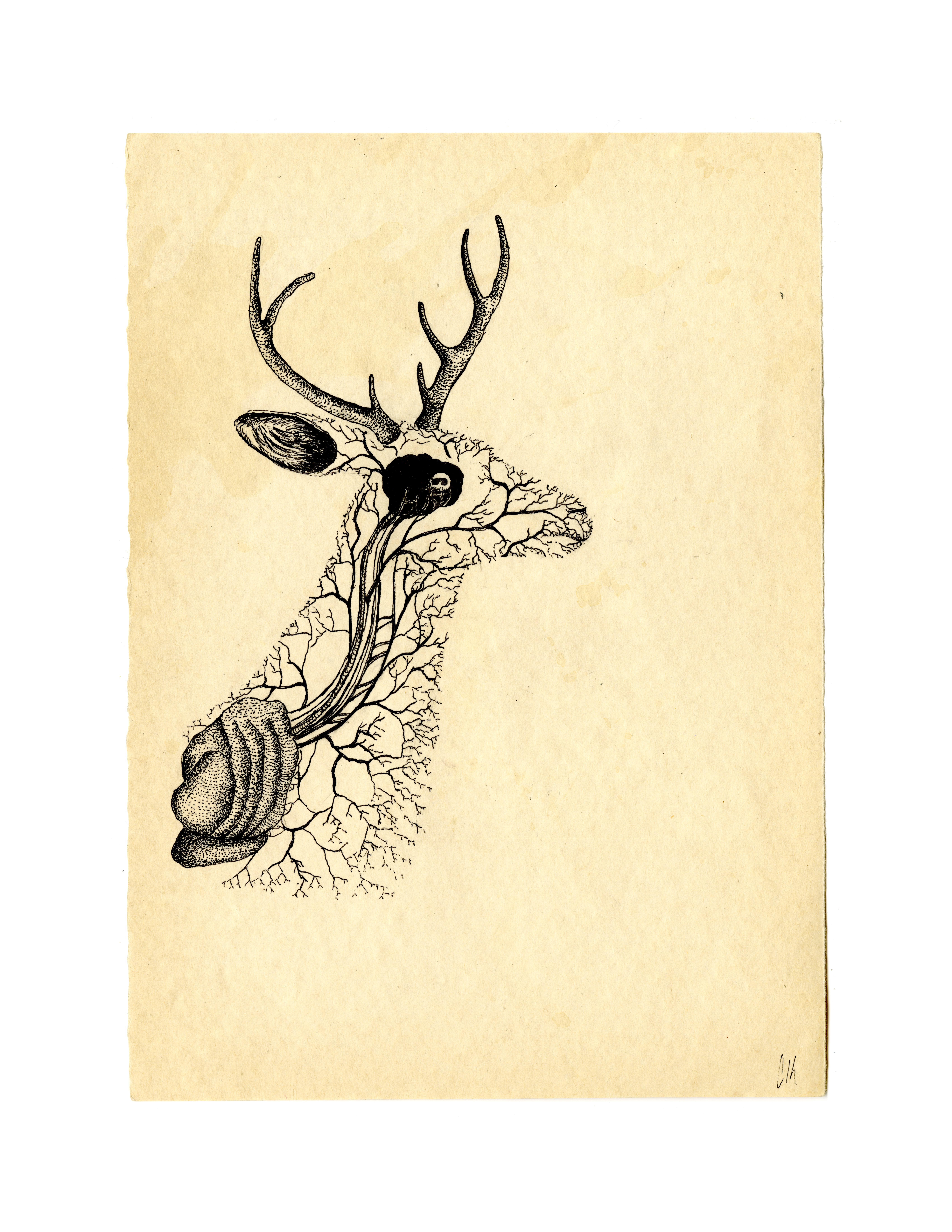 Weird Deer Print 5/7