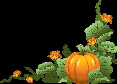 fall-pumpkin-border-clipart-2.png