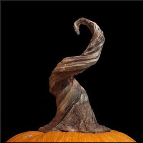 Pumpkin Stems